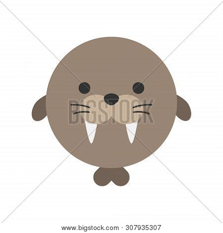 Cute Walrus Round Graphic Vector Icon. Brown Walrus With Teeth And Flippers, Animal Head, Face Illus