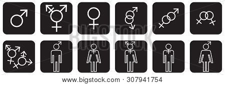 Gender Identities Icons Set, Male, Female, Transsexual, Vector Illustration
