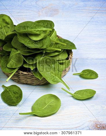 Raw Spinach Leafs In Wicker Plate Closeup On Blue Wooden Background