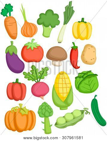 A Vector Many Collection Of Many Vegetables