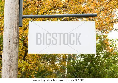 Advertising Empty White Blank Board Hanging On A Wooden Pole On The Left, With Nature Forest In The