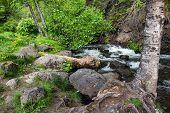 Mc Hugh Creek in Turnagain Arm South of Anchorage in Alaska, poster