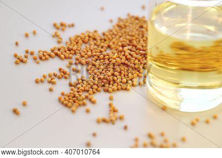 Basic Mustard Ingredients. Mustard And Vinegar In A Bottle.