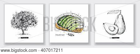 Card With Avocado Tree, Avocado Toast, Whole Avocado