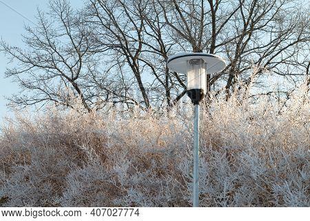 Light Lantern In Winter. Sunny Winter Day