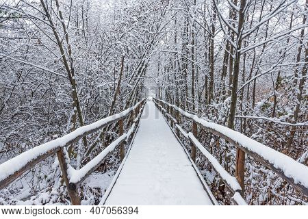Wooden Walkway Through The Snowy Forest On A Winter Day, Snow-white Landscape On A Cold Afternoon.