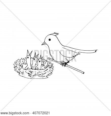 Bird Mom And Chicks In The Nest Icon, Sticker. Sketch Hand Drawn Doodle Style. Minimalism, Monochrom