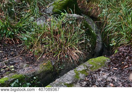 Artificial Watercourse Gutter Lined With Natural Stone, Among The Vegetation In The Park