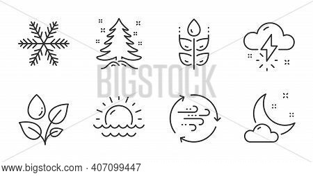 Thunderstorm Weather, Wind Energy And Christmas Tree Line Icons Set. Gluten Free, Snowflake And Suns