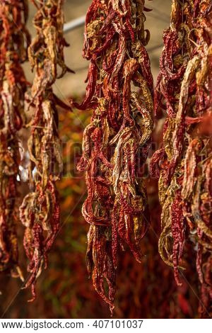 Close-up of red dried chili pepper hanging on the market in Turkey close-up