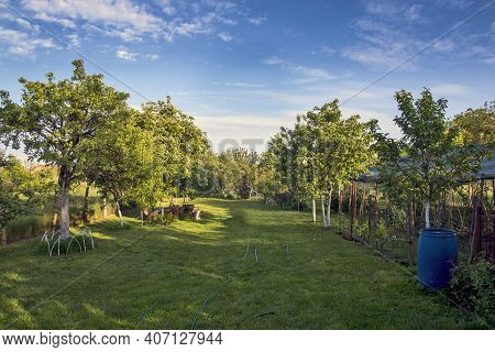 Arranged And Beautiful Village Yard With Grass. The Yard Looks Especially Nice While It Is Lit By Th