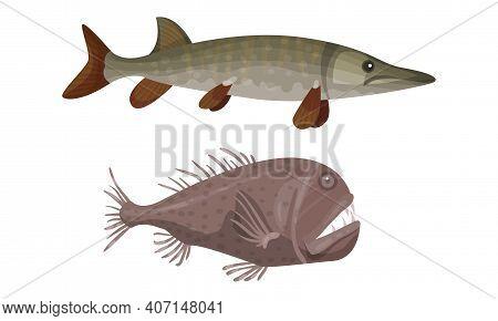 Fish From Deep Sea As Gill-bearing Aquatic Animals Vector Set