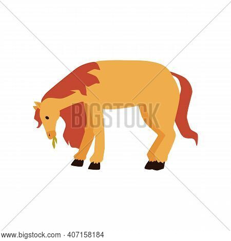 Pony Horse Grazing In Meadow And Eating Hay, Flat Vector Illustration Isolated.