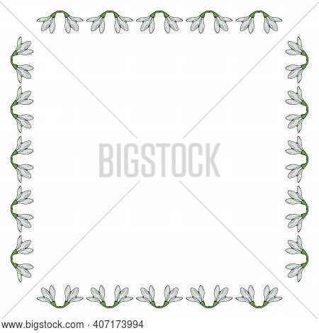 Square Frame With Snowdrops. Doodle Style. Vector Image.