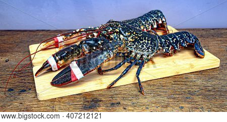 Fresh  Caught  Lobsters On A Wooden Fishermans Table