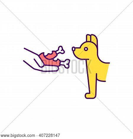 Dog Feeding Rgb Color Icon. Giving Animals Raw Meat. Omnivorous Foods. Animal Welfare. Feeding Stray