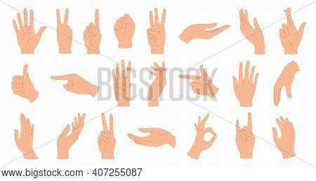 Hands Poses. Female Hand Holding And Pointing Gestures, Fingers Crossed, Fist, Peace And Thumb Up. C