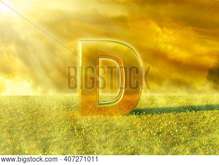 Vitamin D Illuminated By The Rays Of The Sun On Grass. Sunlight Is An Excellent Source Of This Nutri