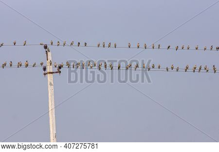 Mulvad, Karnataka, India - November 8, 2013: Double Electrical Cable Line Against Light Blue Sky Fil