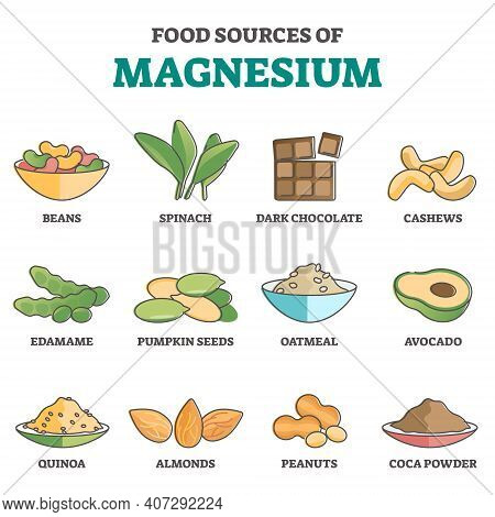 Food Sources Of Magnesium As Products For Healthy Eating Outline Concept