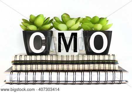 Cmo .chief Marketing Officer. Written On A Pot Of Flowers On Notebooks, On A White Background. Busin