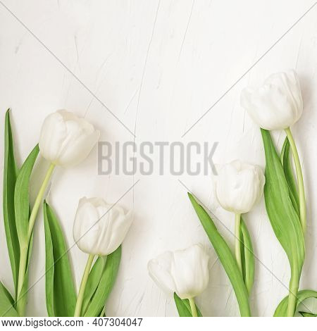 Top View Of Spring Composition On White Background. Smelly Blooming Plants On Light Surface. Valenti