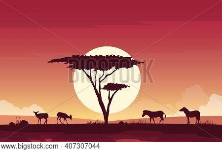 Deer Zebra Horse Animal Savanna Landscape Africa Wildlife Illustration