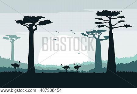 Ostrich In Baobab Tree Savanna Landscape Africa Wildlife Illustration