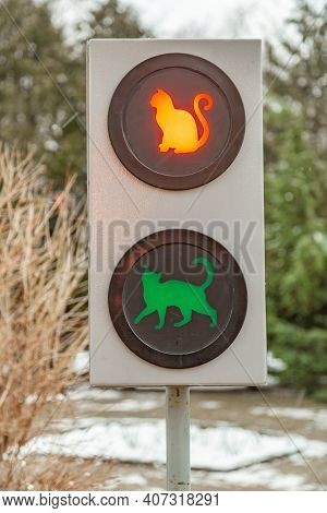 Unusual Traffic Light With Permission And Prohibition Of Movement Of Cats On The Street