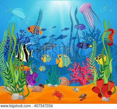Sea Life Animals Plants Composition Colored Cartoon With Marine Life And Various Types Of Algae Vect