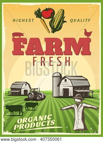 Fresh Organic Products Retro Poster With Highest Quality Background Stylized Ranch Farm And Strawman