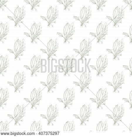 Abstract Green Leave Or Foliage On White Background. Hand Drawn Elements Brances In Natural Summer S