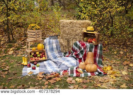 Autumn Photozone From Fall Decorations. Plaid And Hat, Pumpkins, Apples, Hay, Flowers, Leaves, Walnu