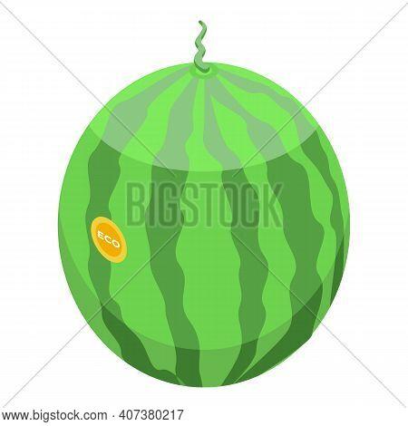 Farm Watermelon Icon. Isometric Of Farm Watermelon Vector Icon For Web Design Isolated On White Back