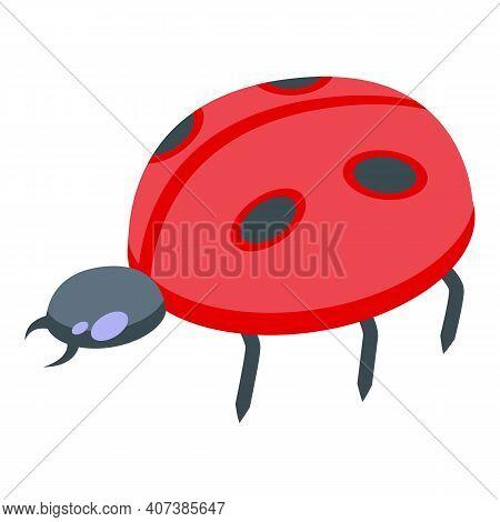 Lucky Ladybug Icon. Isometric Of Lucky Ladybug Vector Icon For Web Design Isolated On White Backgrou