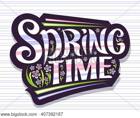 Vector Lettering Spring Time, Greeting Card With Curly Calligraphic Font And Decorative Colorful Str