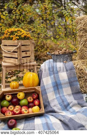 Autumn Photozone. Fall Decorations. Plaid And Pumpkins, Apples, Hay, Flowers, Leaves And Walnuts. In