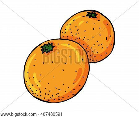 Bright Orange Oranges Are A Traditional Part Of The Chinese New Year Celebration. Vector Illustratio