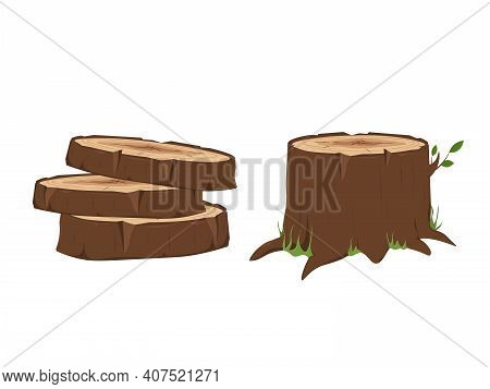 Firewood And Crust, Oak Lumber And Woodpile. Tree Stump And Timber