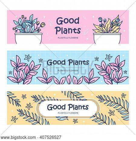 Plants Banners Set. Home Flowers In Pots, Leaves, Sprigs Vector Illustrations With Text. Florist Or