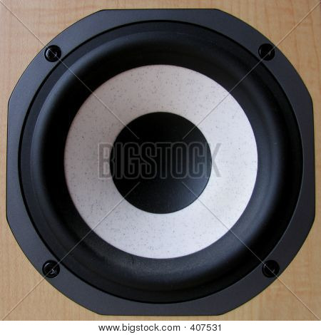 Closeup Of A Bass Loudspeaker