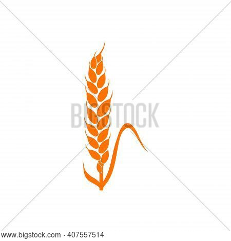 Wheat Spikelets Line Icon. Wheat Farm Symbol. Liner Style. Vector Illustration