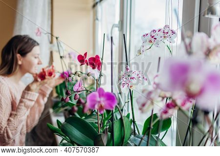 Young Happy Woman Smelling Blooming Orchids On Window Sill. Housewife Taking Care Of Home Plants And