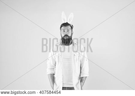 Easter Surprise. Surprised Rabbit Yellow Background. Bearded Man Open Mouth With Surprise. Hipster W