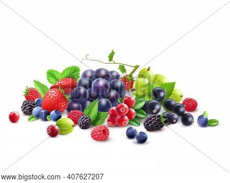 Ripe Berries Template With Grape Gooseberry Strawberry Blackberry Cranberry Bilberry Black Currant R