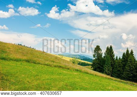 Forest On The Grassy Meadow In Mountains. Beautiful Countryside Landscape On A Sunny Day. Fluffy Clo