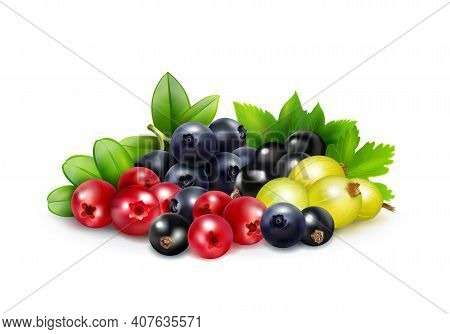 Berry Mix Realistic Concept With Leaves And Branches Of Blueberry Cranberry Gooseberry   And Black C