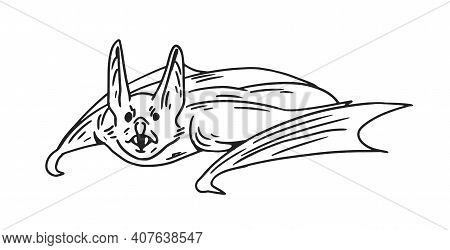 Spooky Flying Bat With Fangs. Halloween Sketch Of Midnight Monster. Hand-drawn Monochrome Vector Ill