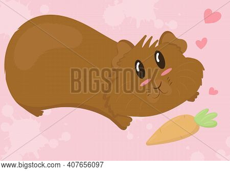 Cute Brown Guinea Pig With Shaggy Muzzle Lies On His Stomach And Reaches For A Delicious Carrot, Cut