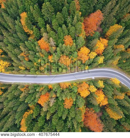 Aerial View Of The Road In A Beautiful Green Forest At Sunset In Early Autumn. Colorful Landscape Wi